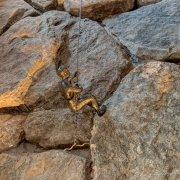 Bronze Rock Climber